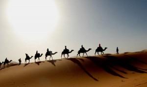 travessia_camelos