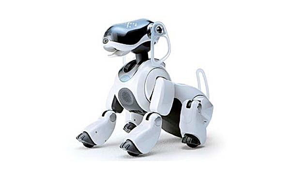 cachorro-robot