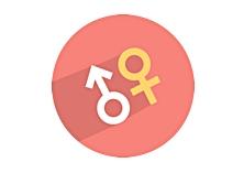 Dimensão masculina feminina