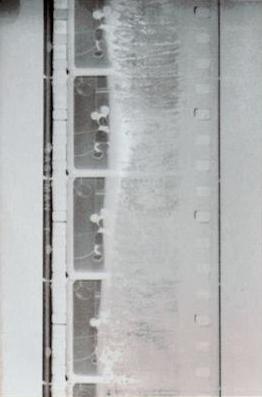 Pedaço do negativo de nitrato de Steamboat Willie (primeiro filme sonoro dos estúdios Disney) em estado de decomposição, descoberto em 1934.